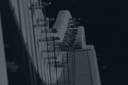 Harp Orchestra Week 8